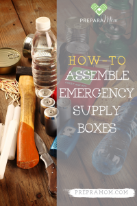Pin Image for How-to Assemble Emergency Supply Boxes